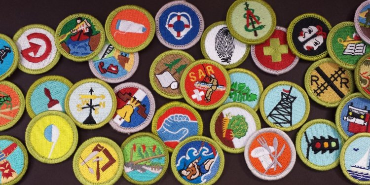 For all 136 merit badges?