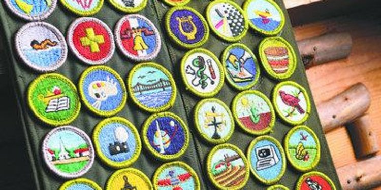 Boy Scout California merit Badge College