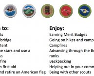 Contact Boy Scouts of California